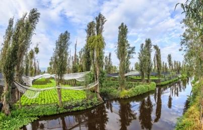 Resultado de imagen para áreas protegidas de Xochimilco